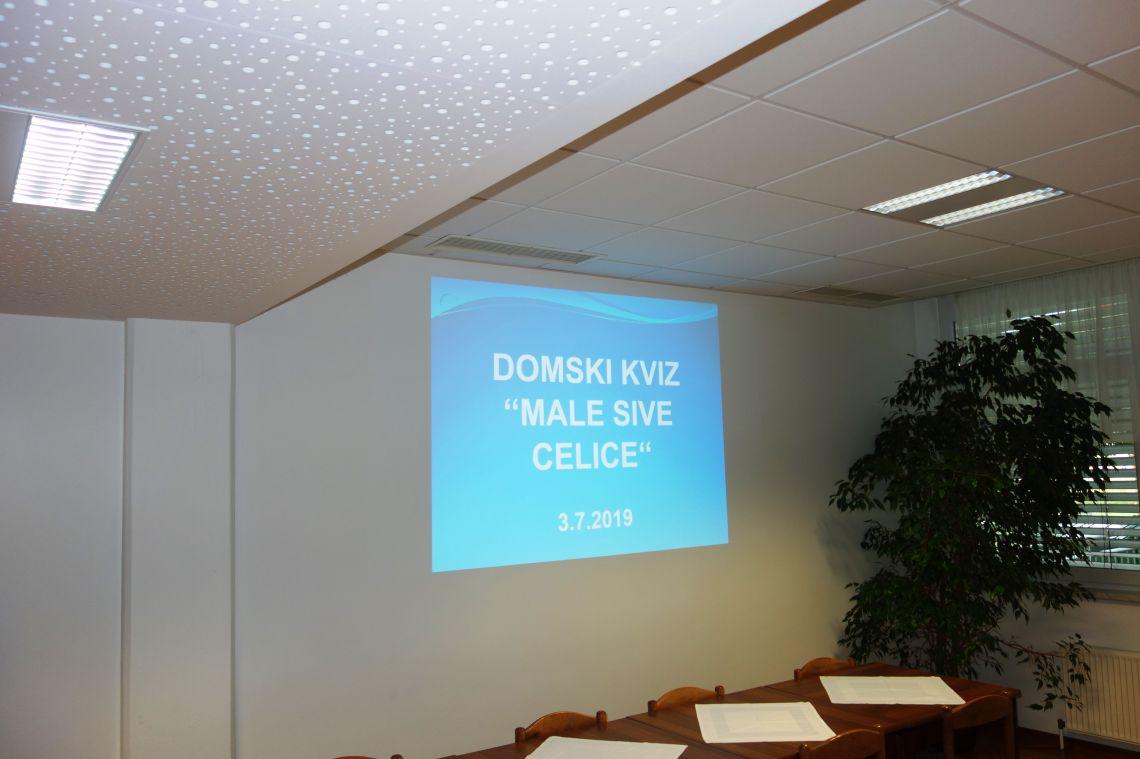 """Domski kviz """"Male sive celice"""" - 2. del"""